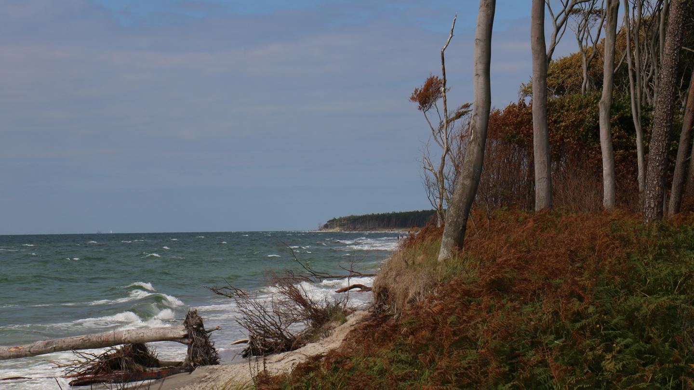 Ist Die Ostsee Salzig